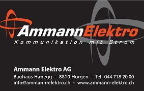 Ammann Elektro